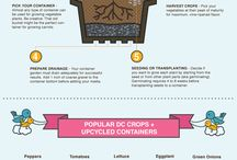 Gardening Infographics / Infographics with useful und helpful information about gardening.