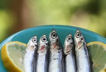 Anchovy / by Lynnette Thramer