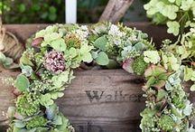 wreaths / by Brenda Gillis