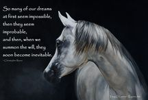 Horse and Soul / Tony O'Connor Equine Art featuring the most inspirational and motivational quotes www.whitetreestudio.ie
