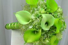 Green Weddings / Green themed wedding inspiration