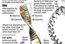 biology things