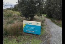 Walking Tours / Walking Tours available in Phillip Island Victoria