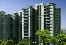 Real Estate Delhi NCR