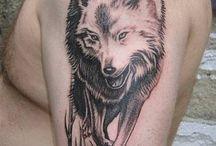 Wolf ❤️