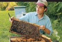 Beekeeping / natural beekeeping + Certified Naturally Grown.