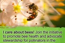 Bayer Pollinator Pledge