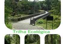 Zoobotânico de Teresina / Zoobotânico de Teresina