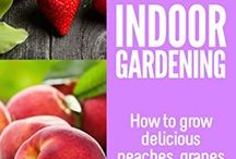 Vegetable/Fruit Gardens