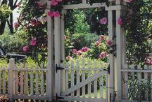 Tuinhek met rozen poort