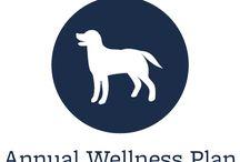 Full Service Veterinary/Boarding/Grooming