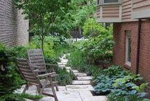NEW HOME: Back garden