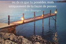 citation des Animaux