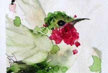 Aquarelle / Peinture