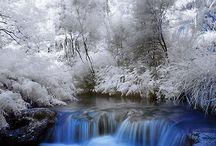 Doğadan resimler