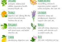 Relaxation and Fragrances