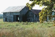 Old Barns & Buildings / by Connie Tufte