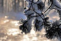 Зима / Альбом