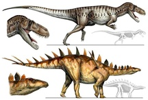 Dinosaurs / Human Seekers