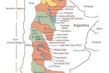 Regiones Vitivinicolas