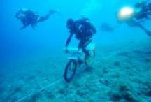 Scuba Diving / by Prime Scuba