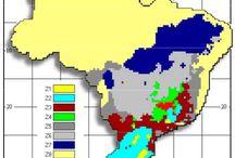 Zoneamento Bioclimático Brasileiro / É o resultado do cruzamento de dados como: zonas de conforto térmico humano, dados climáticos, estratégias construtivas e de condicionamento térmico passivo, com o objetivo de estabelecer critérios para proporcionar conforto térmico nas edificações habitacionais. http://bioclimatismo.com.br/zoneamento-bioclimatico-brasileiro