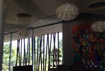 Resort & SPA in vineyard from Mendoza