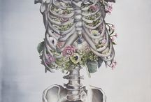 floral anatomy