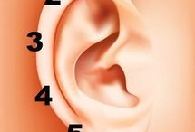 Wasknijpers oor