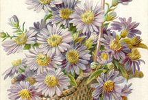 cestas com flores