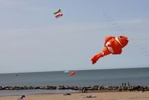 Kites at the Beach in Cattolica, Adriatic Coast of Italy / Kites at the Beach on April 25th