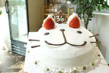 플라비카페 고양이케이크 만들기
