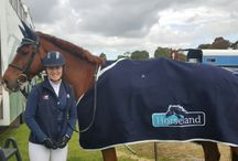 Team Joyce ....Horse Fashion / Where to buy the best of everything for your horse