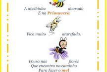 projeto de abelhas