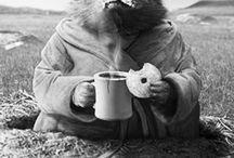 Marmottes / Mon animal préféré, ma mascotte ....