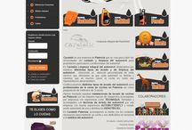carstetic / Web e imagen corporativa para el Centro de lavado del automóvil en Palencia Carstetic