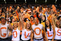 Go Vols! / by Jane Sparks