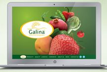 Galina–Agrofreeze - Client / A beautiful website to showcase the freshness and quality standard of Galina EG, an Egyptian flash frozen produce importer.