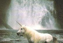 Mythical - Unicorns