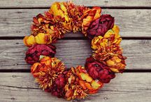 fall/halloween decor / by Louise Raether