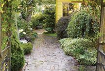 Garden Dreaming