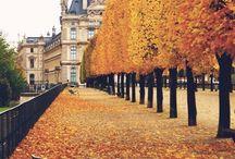 As The Seasons Pass