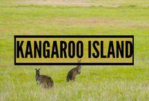 KANGAROO ISLAND! / Kangaroo Island was our absolute favourite place in Australia
