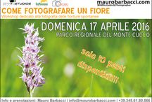 Fotografia Naturalistica / Corsi e workshop di fotografia naturalistica