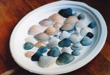 Oceanic Memories / by Melissa Stillion