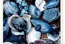 ~ blue aesthetics  ~