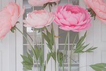 гиганские цветы