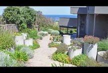 garden : coastal