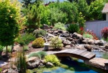 Yard, Garden, Porch & Patio Ideas / For the whole family, gardening, decor, hanging out, having fun!