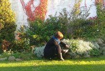 Gardening / prace grodowe też bywają piękne w odbiorze:)